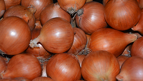 brown-onions